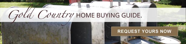 Gold Country Modern Home Buying Guide. Request Yours Now